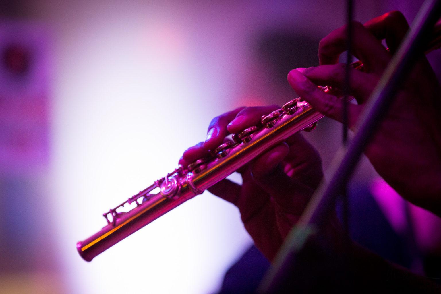 © Laure Marin Photographe Concert_23134